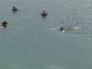 Kirsty swimming in a quarry accompanied by three divers