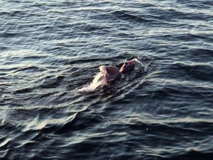 Nicola swimming in the Channel